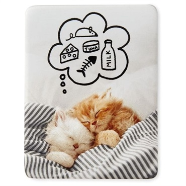 Kitten Dreams Cat Magnet